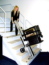 LE-1 on stairs with hearth